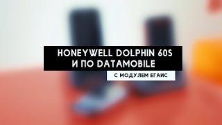 Учет алкогольной продукции: Honeywell Dolphin 60S и ПО DataMobile с модулем ЕГАИС