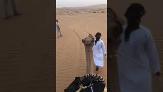 アナンタラ カスール・アル・サラブ・デザート・リゾート https://qasra...