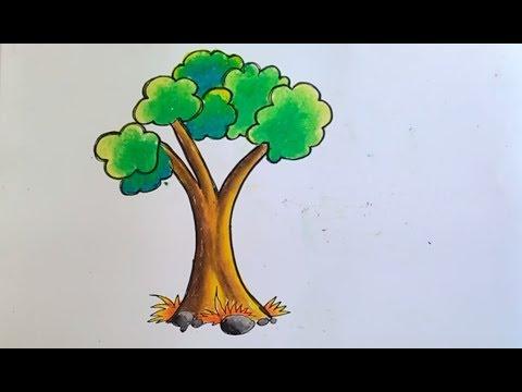 Cara Menggambar Dan Mewarnai Pohon Untuk Anak Youtube