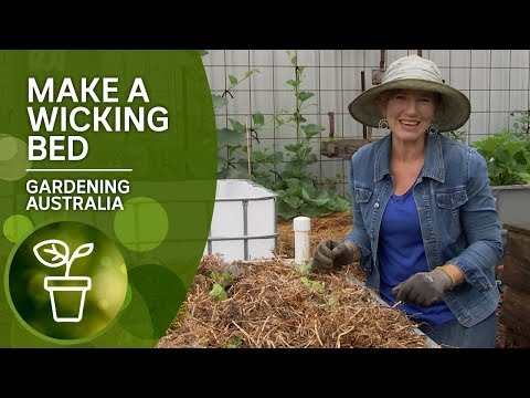 How To Make A Wicking Bed | DIY Garden Projects | Gardening Australia