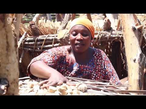 GIZ: My Farm, my business. The Farmer Business School and its sucess in Togo. 2017