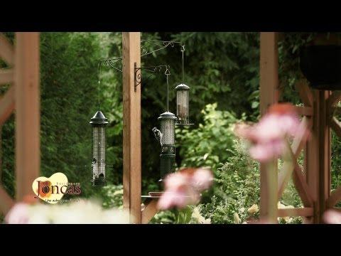 Les Residences Joncas - Une auberge en fleur!