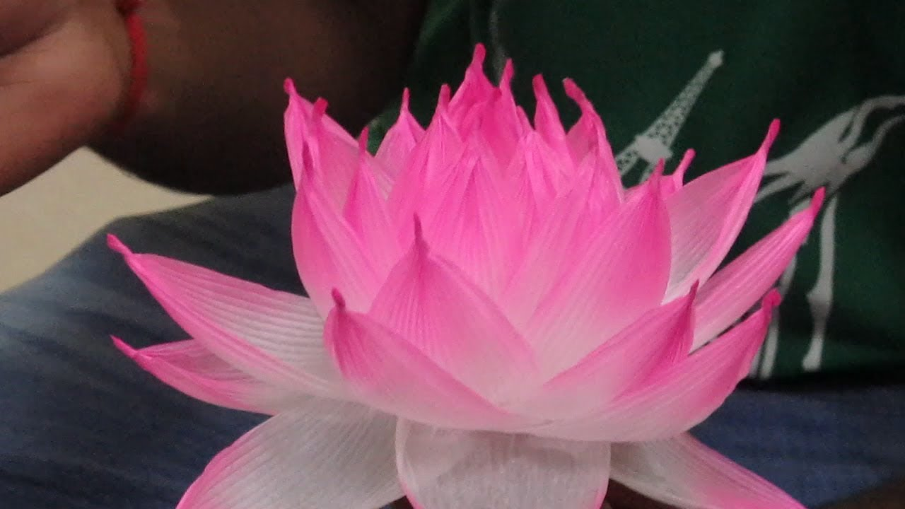 Lotus Lantern Making Workshop Youtube