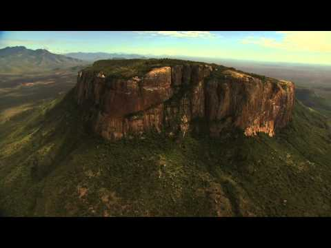 Tropic Air Helicopter Safaris