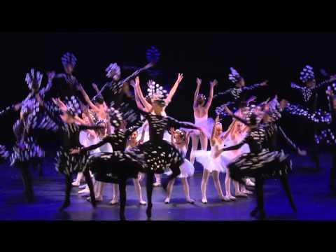 Jerusalem Ballet School. 2014. Dedicated to Nina Timofeyeva.