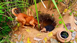 Building The Most Secret Underground Tunnel House In Deep Jungle By Ancient Skill