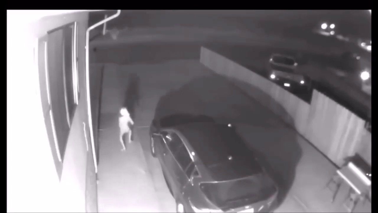 Woman Shares CCTV Footage of Spooky Creature, Netizens Think it's 'Harry Potter's Dobby