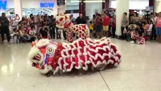 Jamie cny lion dance