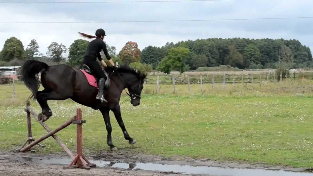 Fall Of Horse Upadek Z Konia Youtube