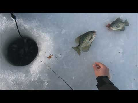 First 2019-2020 Ice Fishing Outing - Early Ice Crappies!!