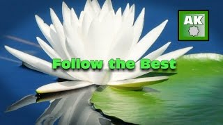 Follow The Best Thereof...