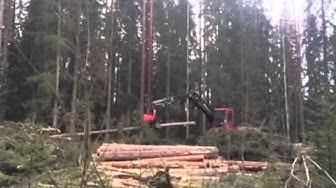 Metsäkone työssään