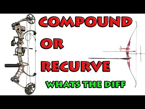 compound or RECURVE whats the difference archery