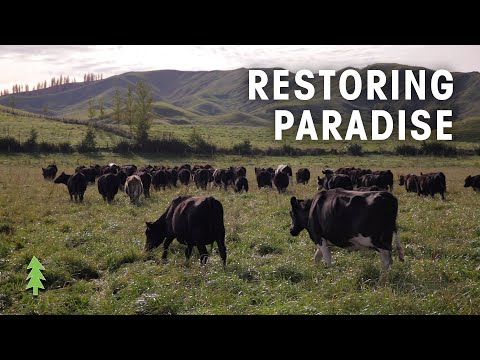 How Regenerative Agriculture Can Fight Climate Change - Restoring Paradise
