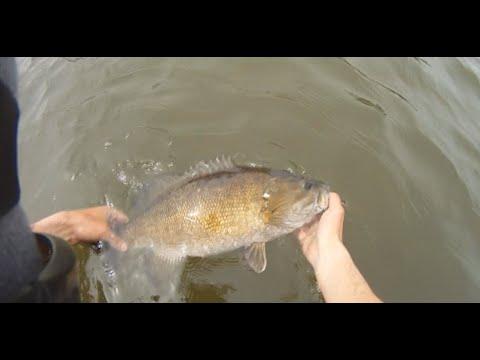 Pre-spawn Bass Fishing At Blue Marsh Lake