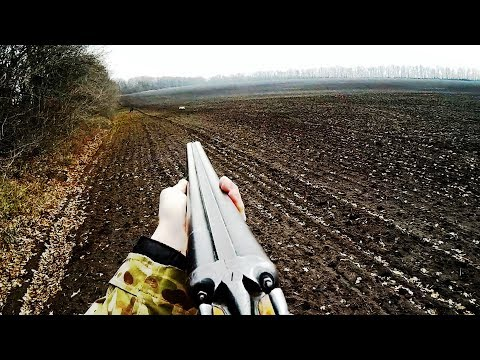 Следы по чернотропу, стойка по зайцу, работа с голосом - Охота на зайца / Hare Hunting