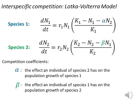 Modelling Interspecific Competition