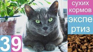 видео Сухой корм Проплан для кошек. Купить Pro Plan для котят.