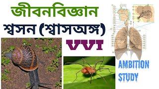 BIOLOGY(শ্বাসঅঙ্গ /RESPIRATION -5)# PART-20 QUESTION SET, RAIL-ASM, GROUP D,WBCS MAIN PRELI,WBPOLICE