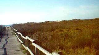 360º accés càmping La Noria, salicornar