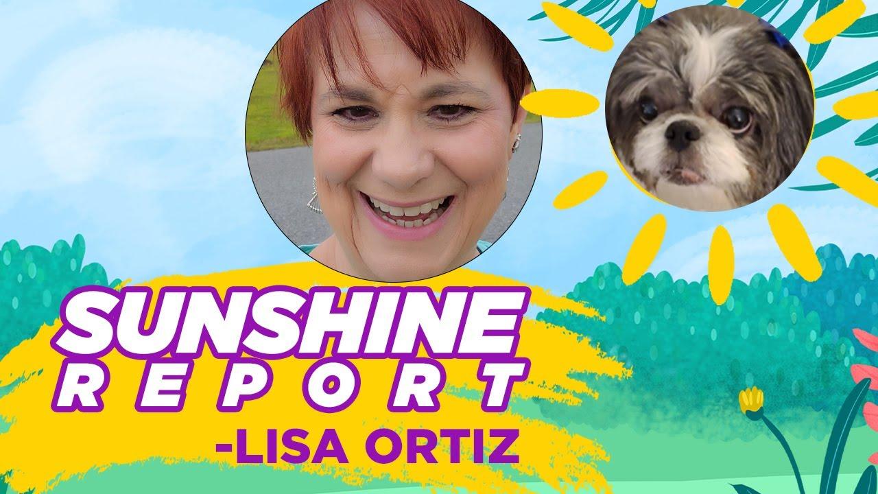 Sunshine Report by Lisa Ortiz Your Savannah Georgia Real Estate Agent