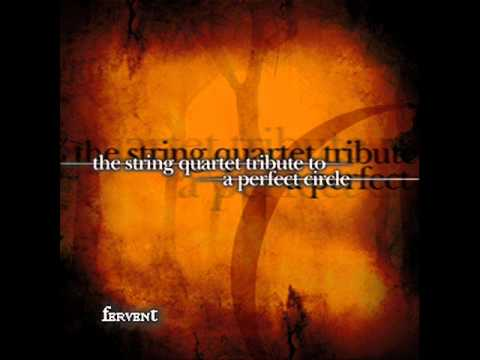 The String Quartet Tribute To A Perfect Circle - Pet