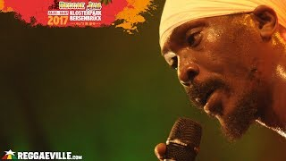 Download Anthony B & House of Riddim @Reggae Jam 2017 MP3 song and Music Video