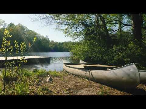 Serene Campus Scenes: Lake Matoaka