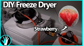 How to Build a Freeze Dryer