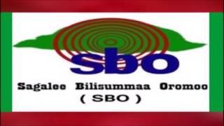 SBO Bitootessa 05,2017. Oduu,