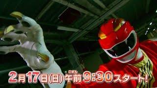 Super Sentai Strongest Battle- Episode 1 PREVIEW (English Subs)
