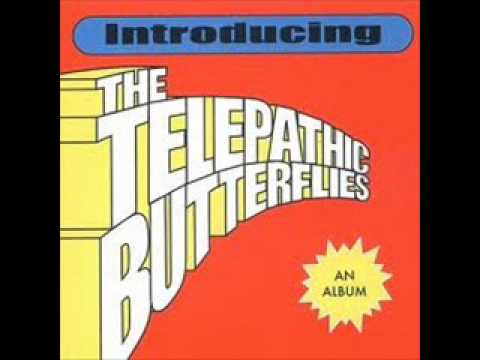 The Telepathic Butterflies - Big Bang