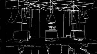Progetto tokay