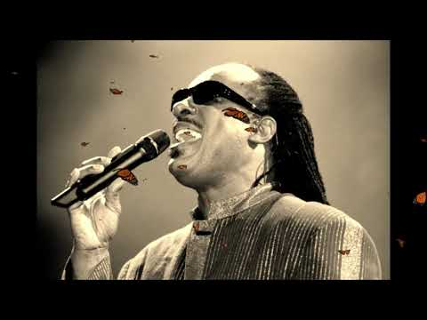 Stevie Wonder~ Tomorrow Robins Will Sing (Live Audio) White Room 1995 mp3