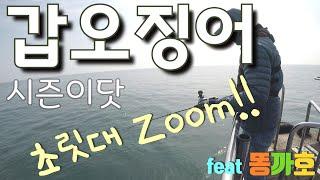 갑오징어시즌이닷!! 초릿대 끝보기로 장원해보잣~/fea…