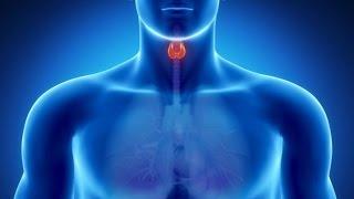 ☞ 10 Remedios caseros para el hipertiroidismo