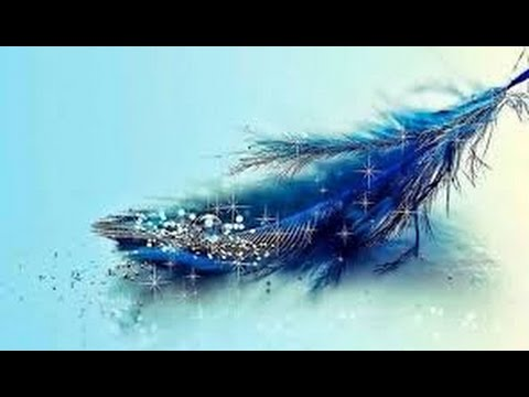 magical blue feather youtube