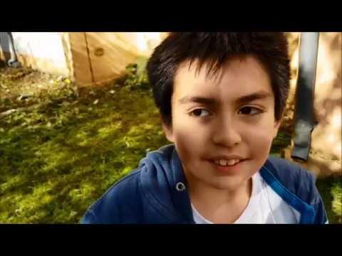 Download Pablo Gamer y un cubil para la Manada