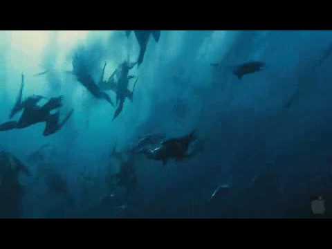 Download Wild Ocean 3D (Trailer engl.)