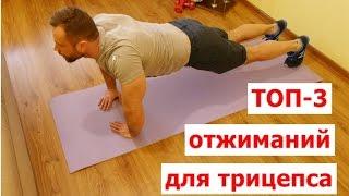 видео отжимание от пола какие мышцы