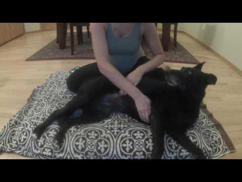 Lymphatic Drainage Massage   Jetta