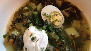 Sorrel Soup - Green Borscht
