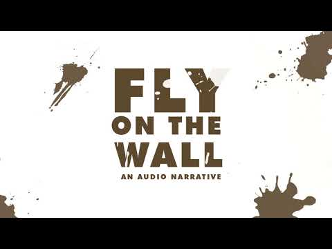 Fly On The Wall - Audio Narrative