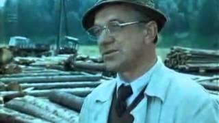 Za trnkovým keřem (1980) - ukázka