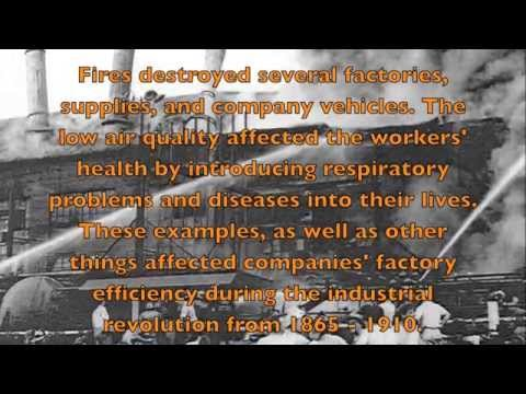 Industrial Revolution and it's effects on the US environment