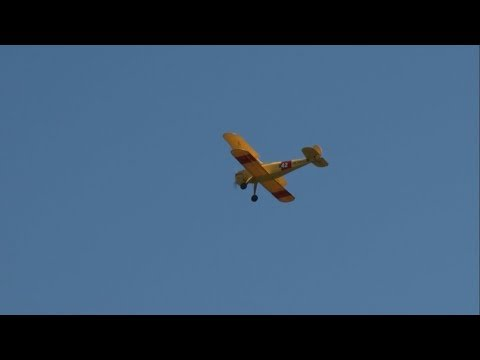 2019 Flying W Airshow - Radio Controlled Model Aircraft