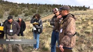 2015 Science in the Sagebrush Steppe