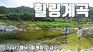 [다리tv] 최고의 여름 피서지!!! 청정계곡!!!  화장실/피래미 낚시/캠핑!!! ☆ 무료 캠핑장 ☆