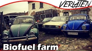 ABANDONED Farm with very old cars VOLKSWAGENS! [SUBS CC]