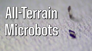 All Terrain Microbots